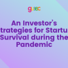 An Investor's Strategies for Startup Survival during the Pandemic